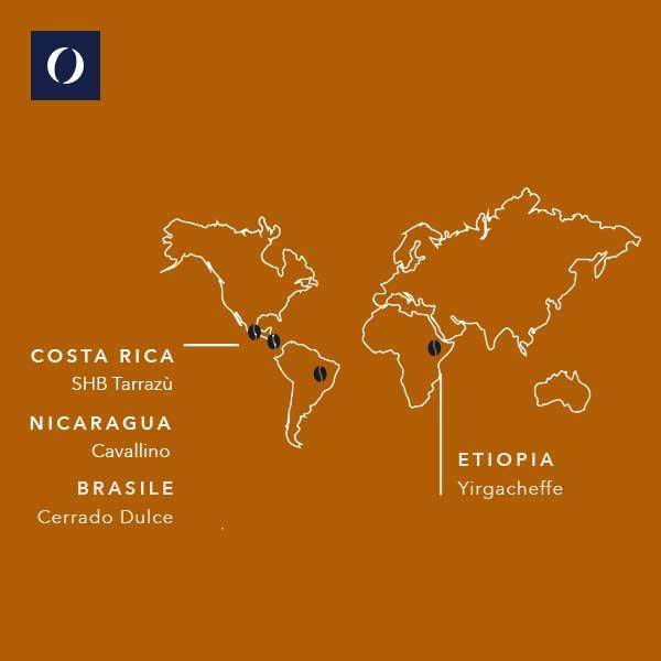 Origini del caffè presente nella miscela